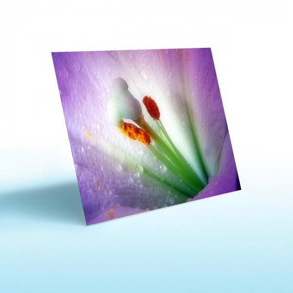 Glas-Bildheizung Nomix Dekor - Infrarotheizung ohen Rahmen