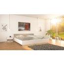 Bild Infrarotheizung 750 Watt | 90 x 70 cm | 11-18 m²